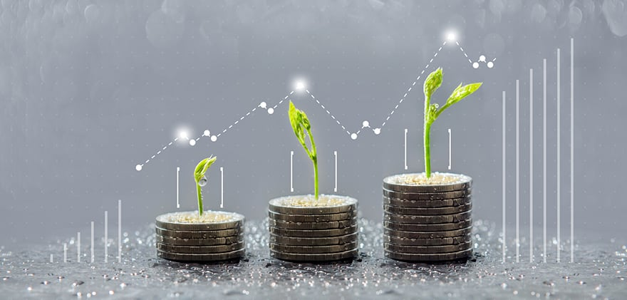 Trees Growing On Coins, Business With Csr Practice, Save And Gro